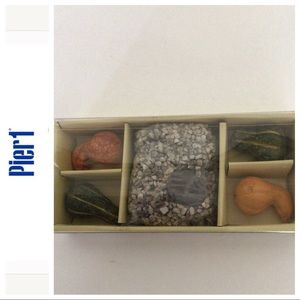 PIER 1 FALL CANDLESCAPING SET NWT